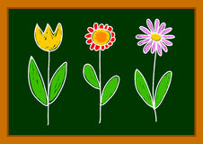 Drawing of flowers Stock Images