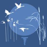 Drawing flying birds. Vector drawing flying birds on background sun Stock Illustration
