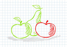 Drawing of fruits Royalty Free Stock Photo