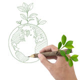 Drawing Globe and Plant. Stock Images