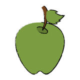 Drawing green apple leave fruit. Vector illustration eps 10 Stock Images