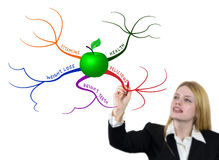 Drawing green apple mind map. A young woman draws the colorful mind map with green apple Royalty Free Stock Images