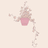 Drawing of green ivy in flowerpot. Royalty Free Stock Photography