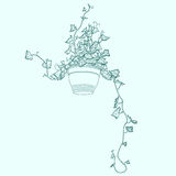 Drawing of green ivy in flowerpot. Royalty Free Stock Image