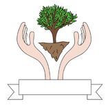 Drawing of hands protecting a green tree Royalty Free Stock Photos