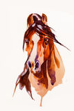 Drawing head of the horse. On a white background Stock Photo