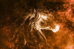 Drawing horse on old paper, original hand draw. Color effect. Drawing horse on old paper, original hand draw. Color effect stock images