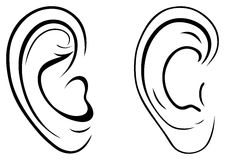 Drawing human ear. Vector set: drawing human ear Royalty Free Stock Photography