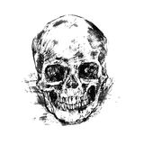 Drawing human skull on white Stock Photography