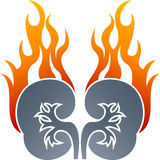 Drawing of kidney flame logo. Illustration drawing of kidney flame logo with isolated background Stock Photos
