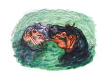 Drawing of kissing hippopotamus Stock Photography