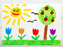 Drawing: landscape with apple tree, tulip flowers an happy sun Royalty Free Stock Photo