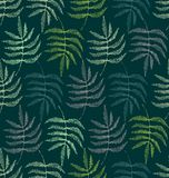 Drawing of the leaves of the fern Stock Photo