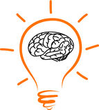 Drawing light bulb brain in side. Hand drawing light bulb brain in side stock illustration