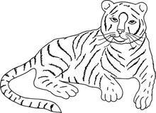 Drawing of lying tiger, vector Stock Photos