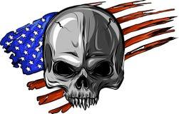 American skull Stock Photo