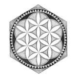 Drawing mandala, geometric, graphically ornament Royalty Free Stock Photo