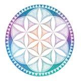 Drawing mandala, geometric, graphically ornament Stock Image