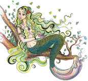 Drawing a mermaid Royalty Free Stock Photo