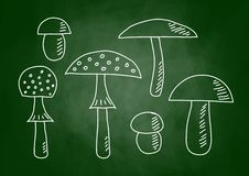 Drawing of mushrooms Royalty Free Stock Images