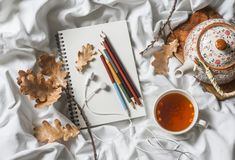 Drawing notepad, colored pencils, sea buckthorn tea, dried leaves of oak in bed, top view. Weekend cozy leisure concept. Flat lay Royalty Free Stock Images