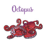Drawing of octopus  on white background Royalty Free Stock Image