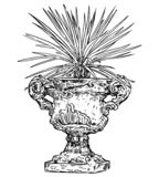 Drawing of Old Antique Ornamental Stone Goblet or Vase With Yucca Plant. Vector drawing of old ornamental antique garden goblet or vase made from stone with royalty free illustration