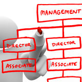 Drawing Organizational Chart on Board Royalty Free Stock Photo