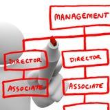 Drawing Organizational Chart on Board vector illustration