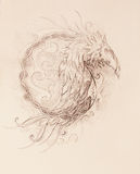 Drawing of ornamental phoenix on old paper background. Royalty Free Stock Photos