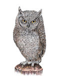 Drawing owl sitting on a tree stump Royalty Free Stock Images