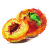 Drawing peach with a slice. Vector isolated peach with a slice - drawn by oil paints Royalty Free Stock Photos