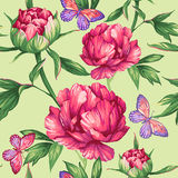 Drawing peonies and butterflies. Seamless pattern of large peonies and butterflies Stock Photography