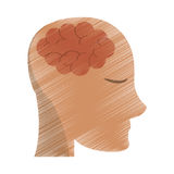 Drawing person head brain think Stock Image