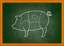 Drawing of pig Royalty Free Stock Photos