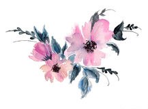 Drawing pink mallow flower watercolor illustration Stock Photography