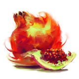 Drawing pomegranate with a slice. Vector isolated pomegranate with a slice - drawn by oil paints Royalty Free Stock Photo