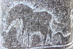 Drawing on a rock. On the stone is a drawing in the form of an horse Royalty Free Stock Images