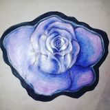 Drawing of a rose. Color pencil and gel pen drawing of a rose that i drew stock photo