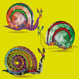 Drawing set of three snails Stock Photography