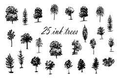 Drawing set of 25 trees ink  illustration Royalty Free Stock Photo