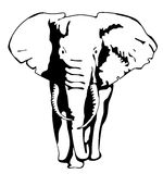 Drawing silhouette of a moving elephant. Eps10 vector illustration Royalty Free Stock Photography