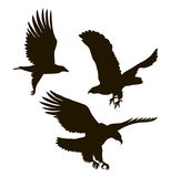 Drawing silhouettes of three eagles Royalty Free Stock Photography
