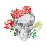 Drawing skulls and bones Stock Image