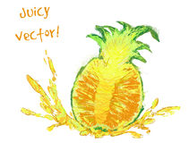 Drawing slice of pineapple Royalty Free Stock Photography