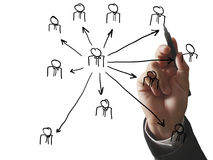 Drawing social network structure in whiteboard Stock Images