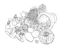Drawing still life of food and vegetable.  Royalty Free Stock Image