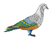 Drawing stylized dove pigeon. Freehand sketch for adult anti stress stock illustration
