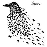 Drawing Surrealism black crows. Painted black crows surrealism, isolated on white Royalty Free Stock Photos