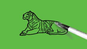 Drawing a tiger in black, brown, orange and yellow colour combination on abstract green background